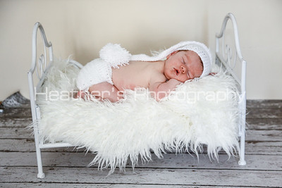 Nolan Smith Newborn Gallery_249