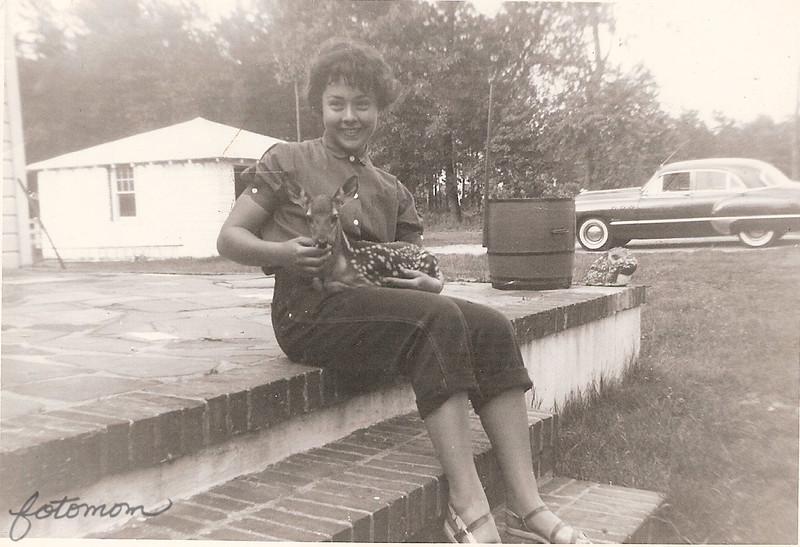 Tia Long Deer Near 1950