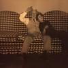 IMG_8605Francis Patrick Long-Maryann Engel-Monroe NC-About 1983