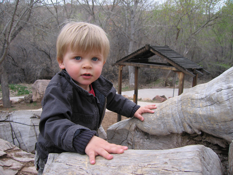 climbing on a carved up log