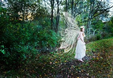DSC_1193 wings