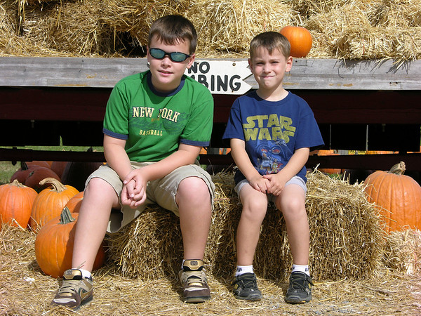 Picking a Perfect Pumpkin