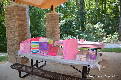 Princess Birthday Party at Squirrel Lake Park