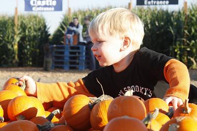 Pumpkin Patch October, 2010