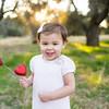 Hauffen valentine mini-6494