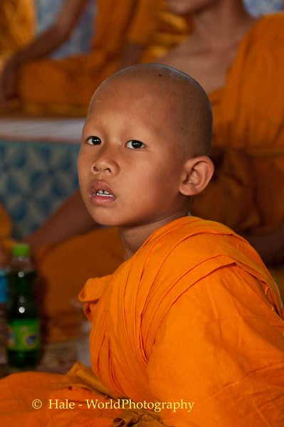 Young Theravada Buddhist Monk