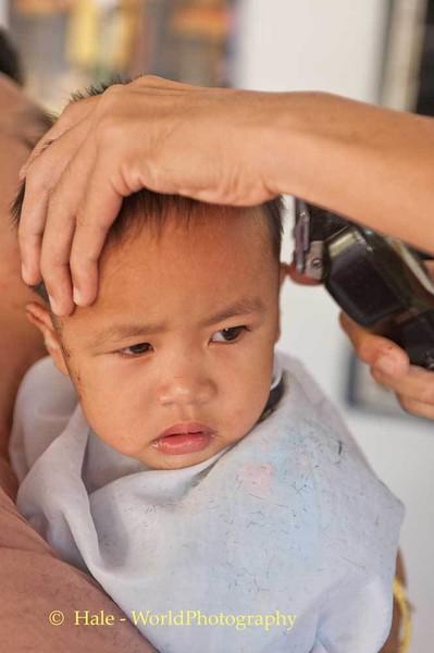 Haircuts Are Not Fun !