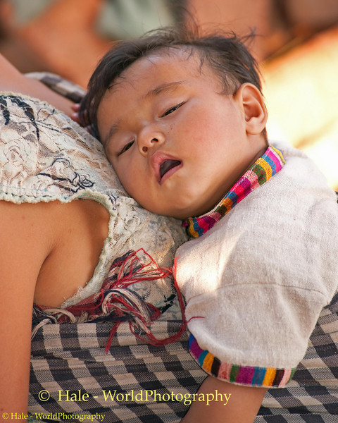 Baby Asleep On Mother's back As She Weaves Roof Panels, Ban Houana, Laos