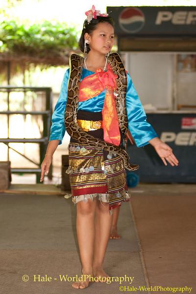 Young Student Performs In Kok Sa-nga King Cobra Village