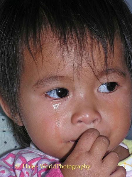 Sad Fern Crying - Tahsang Village, Isaan Region Thailand