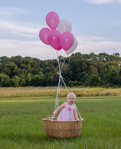 Rylynn's 1st Birthday