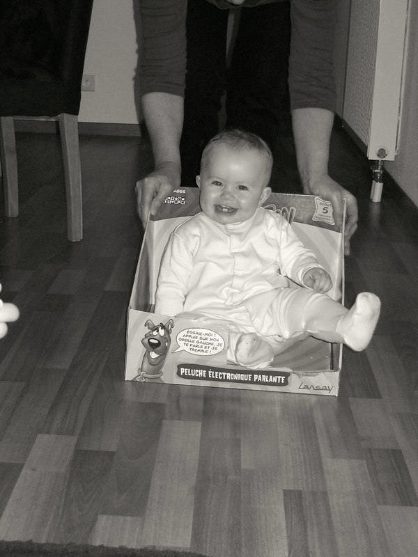 023 Sophias Birthday Box