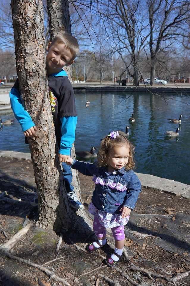 A 50-degree day in February is an opportune time to visit Loose Park.