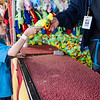 Antonio Ford, 8, picks out a prize at the St. Bernard's Spring Carnival on Thursday afternoon during April vacation for the local schools. SENTINEL & ENTERPRISE / Ashley Green