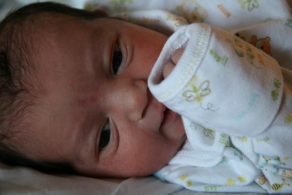 Tal Pregnancy 030
