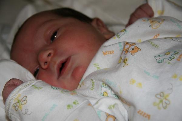 Tal Pregnancy 045