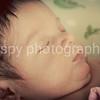 Tanle Elaine-11 days old :