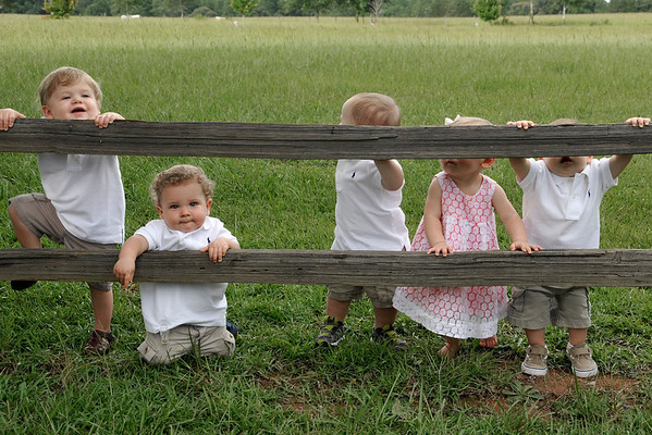 7 15 13 Babies 239