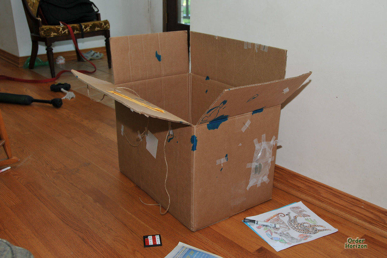 The decorated box