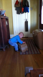 Theo opening boxes