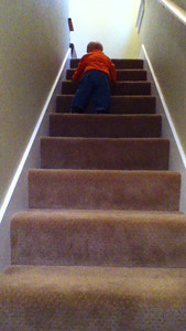 Theo masters stair climbing