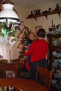 Looking at the small Star Wars and Star Trek tree with Grandma