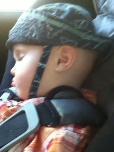 Theo asleep and immune to the sights around Gatlinburg