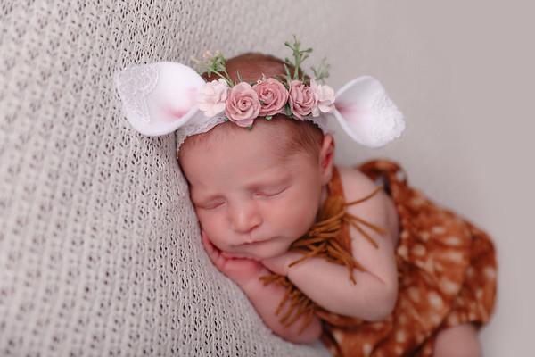 Vaccaro Newborn 2017