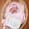 Vivian's Newborn Photos_019