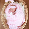 Vivian's Newborn Photos_003