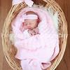 Vivian's Newborn Photos_005