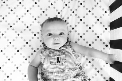 Wade 4 months ~ 8 2015 -021