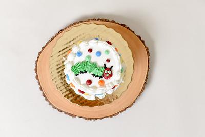 Weston Cake Smash-06