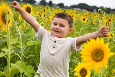 William Sunflower Portraits 2014