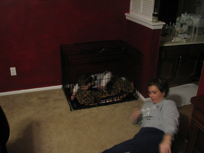 I promise this is not a normal occurence.  When we were having to show our house when it was for sale, we would have to lock the dogs up.  Tyler liked getting in the dog pen.