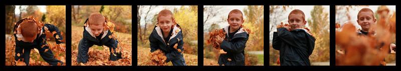 zander collage