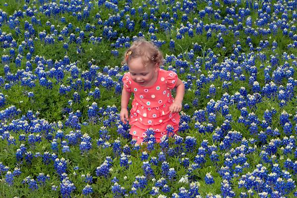 Zoey Bluebonnets