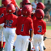 Group of little league baseball players
