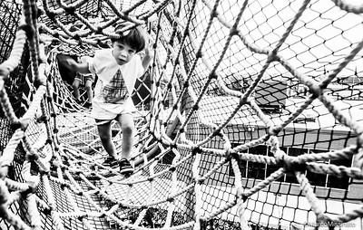 Walk Through The Net