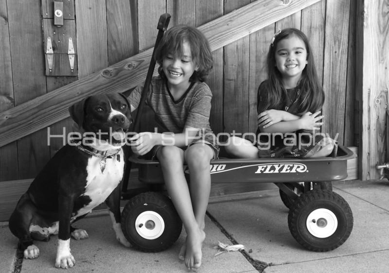Cielo Family296