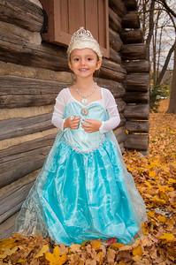 Paige costume 2014 #3