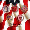 American Flag Series (vertical)