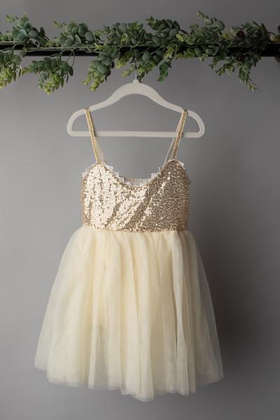 Glitter Tulle Dress (size 4t)