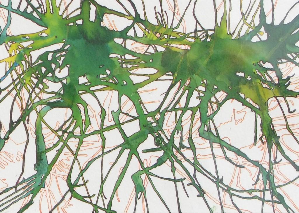 Soucy, Phil - Sea Weeding