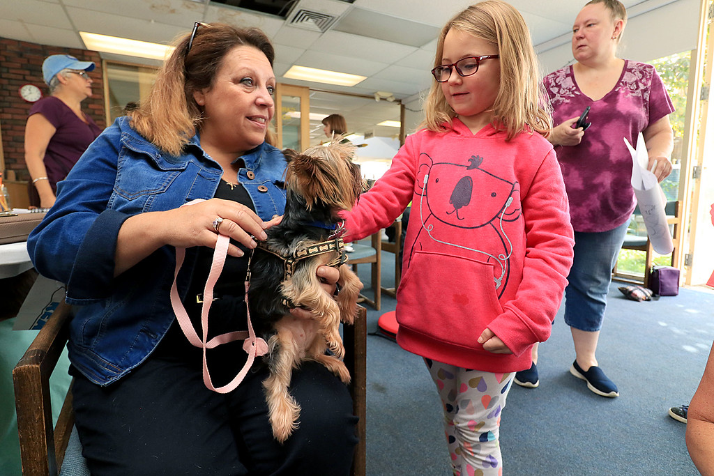 . Fitcburg Public Library celebrated Children�s Literature on Saturday, September 22, 2018 with meet the Therapaws Therapy Pets at the Annual Children\'s Literature Festival. Payton Catterton, 7, of Fitchburg meets Therapaws Therapy Pet Libby, 4, a Yorkie with her owner Cheryl Maguy Stewart during the festival. SENTINEL & ENTERPRISE/JOHN LOVE