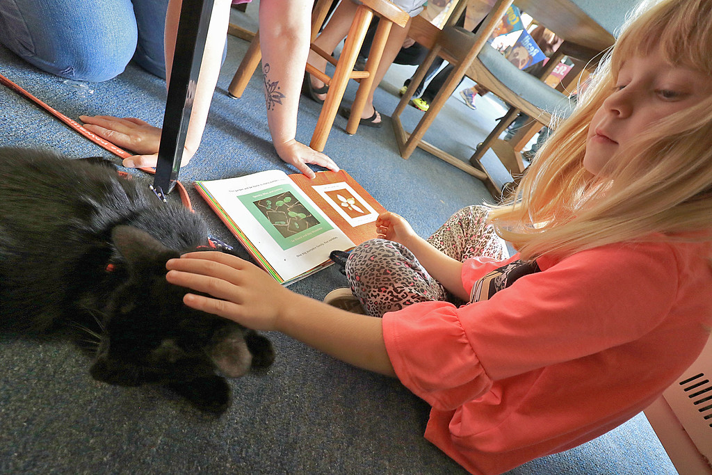 . Fitcburg Public Library celebrated Children�s Literature on Saturday, September 22, 2018 with meet the Therapaws Therapy Pets at the Annual Children\'s Literature Festival. Emma Checchia 6, reads to Mr. Wuffles at the event. SENTINEL & ENTERPRISE/JOHN LOVE