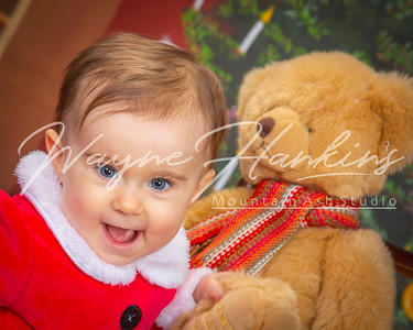 Piper's xmas shoot