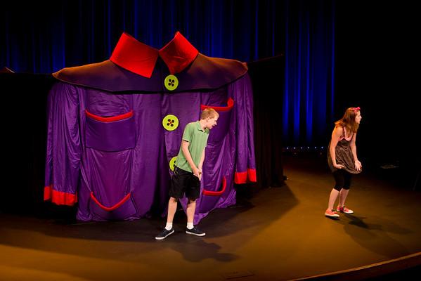 Madcap Puppets 2015