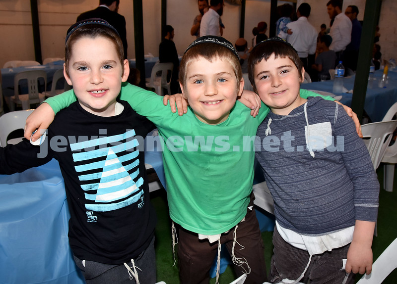 Childrens Succot Rally at Tzemach Tzedek Synagogue. From left: Gavi Sufrin, Mendel Feldman, Tuvia Scuri. Pic Noel Kessel