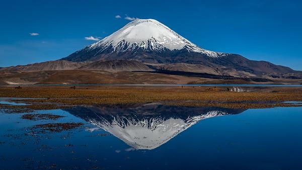 Parinacota, Lago Chungara - Chile